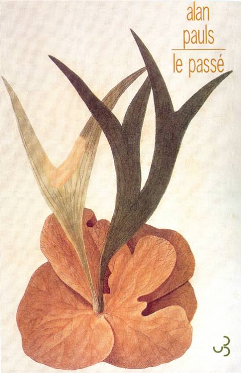 Alan Pauls - Le Passé