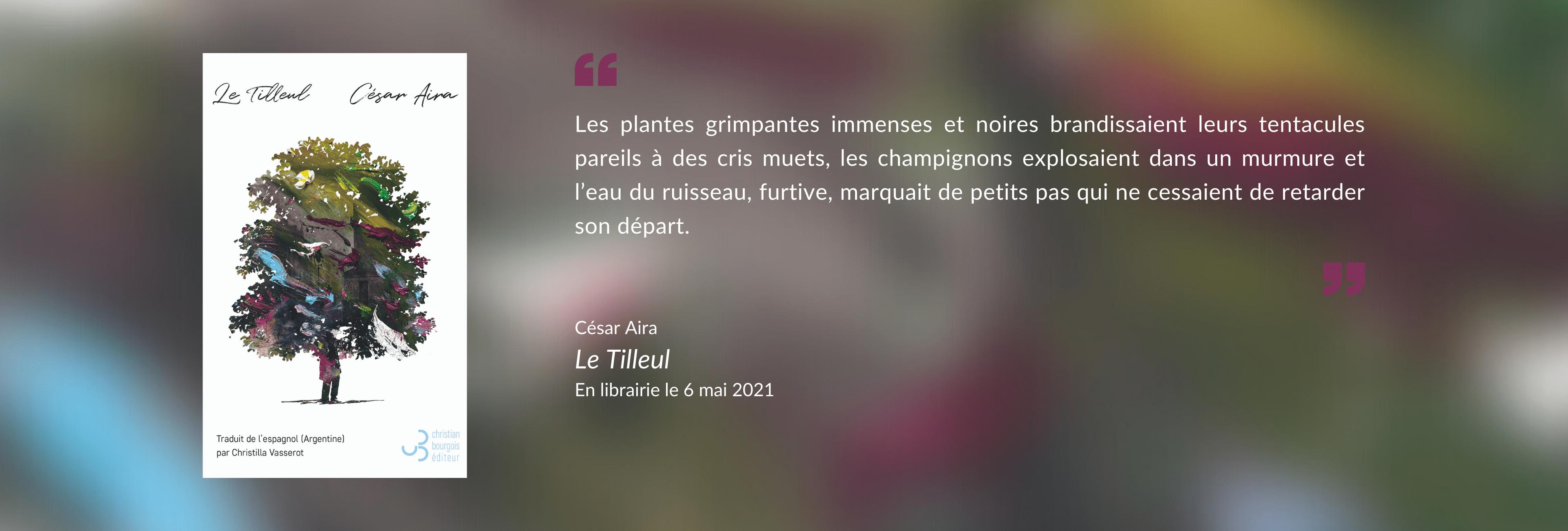Aira - Le Tilleul