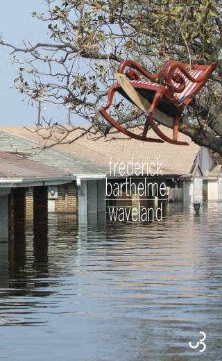 Frederick Barthelme - Waveland